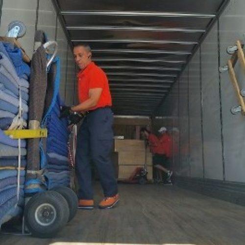 Cargo Assistance